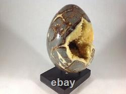 Top Quality Set Of Two Hollow Septarian Nodule Eggs from Utah