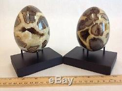 Top Quality Set Of Two Hollow Septarian Nodule Eggs from Utah 50 % Off Sale