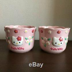 Bonjour Kitty Flower Kitty Flowerpot Pot De Fleurs Planteur Deux Séries 1997 Sanrio Retro
