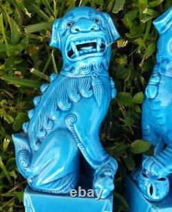 Paire Ensemble De Deux 2 Bouddhistes Foo Fu Chiens Chinois Lions Statues Blue Glaze Chine